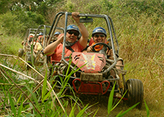Excursions en Republique Dominicaine in Punta Cana & Tours